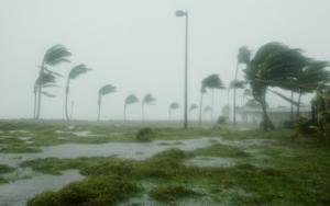 Wind & Hurricane Damage | Flood Damage |
