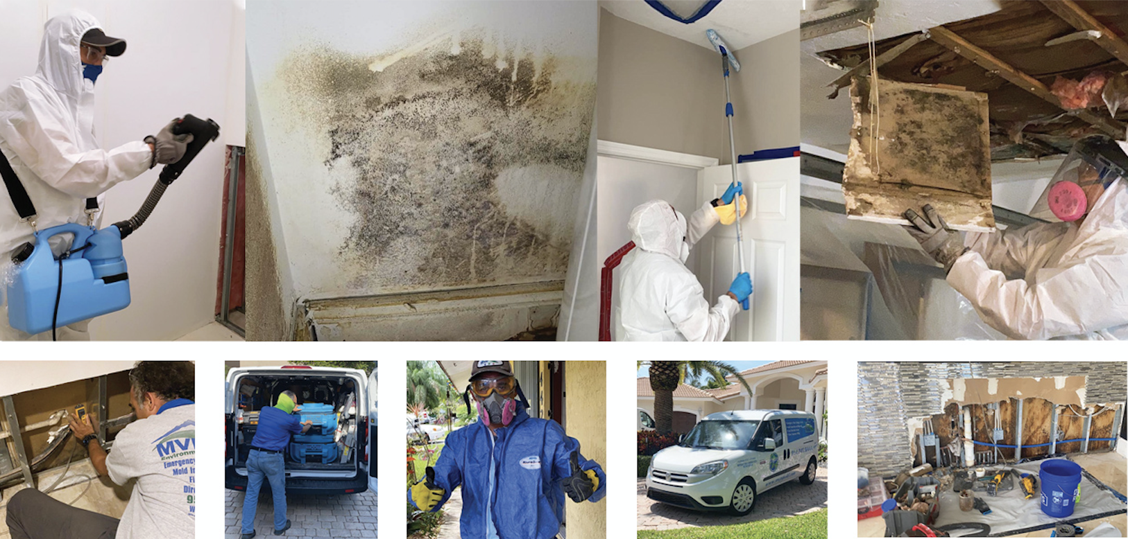Precise Mold Remediation Top of the Line Machines